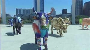 Austin Cows On Parade